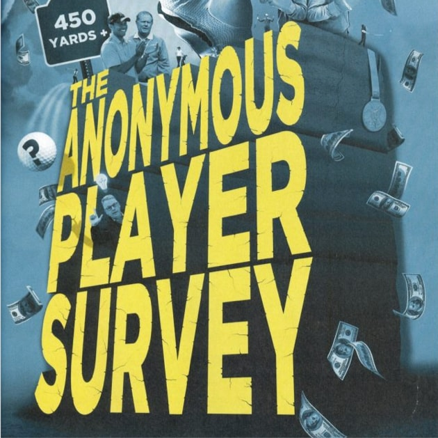 The Anonymous Player Survey