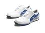 Mens_WhiteBlue Shoe_1